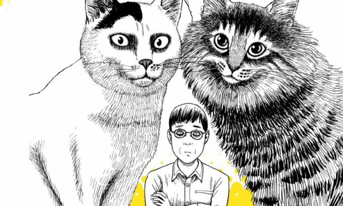 ito-junjis-cat-diary-22412771-1000x600-14436129111